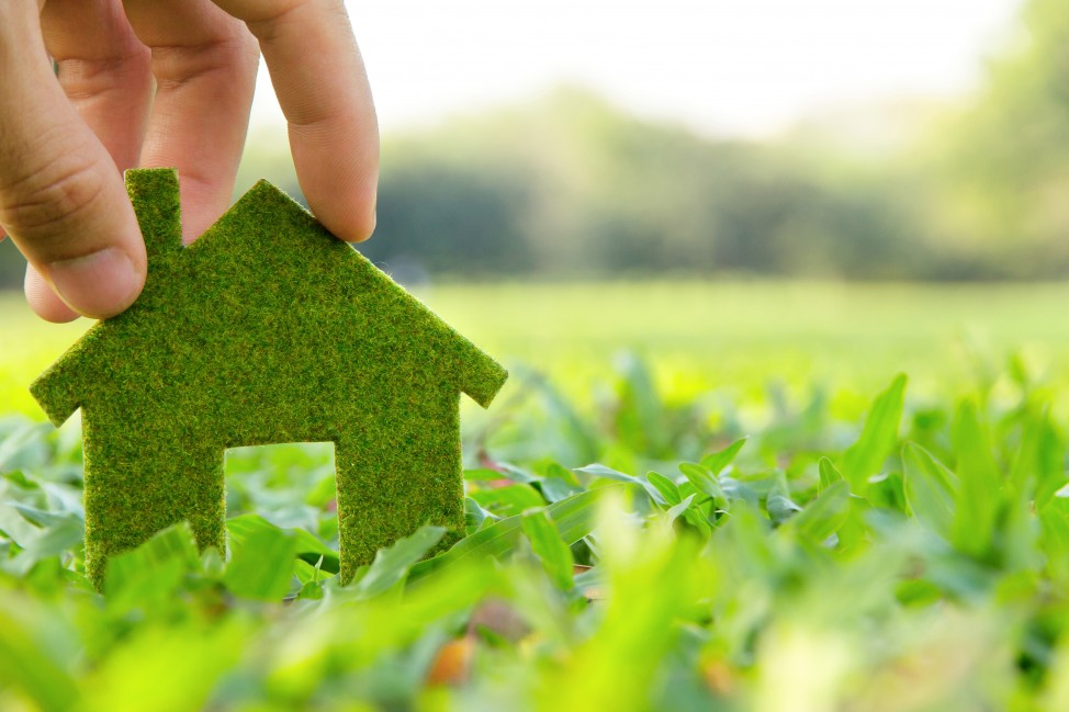 How to make your move green